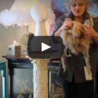 Sandra by Jon Renau Wig review FS26/31& 4/33